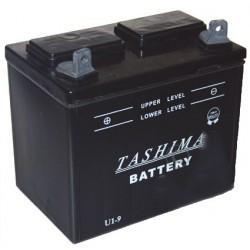 Batterie pour tondeuse autoportée 12V, 24A. L: 195, l: 130, H:185mm, + à gauche. (livrée sans acide).
