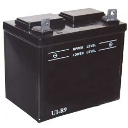 Batterie pour tondeuse autoportée 12V, 24A. L: 195, l: 130, H:185mm, + à droite. (livrée sans acide).