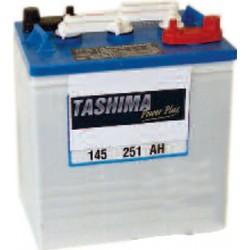Batterie de traction 6V, capacité 199 AH5H pour véhicules de golf, transporter, utilitaire.