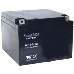 Batterie motoculture 12V, 26A. L: 165, L: 175, H: 125mm, + à droite.