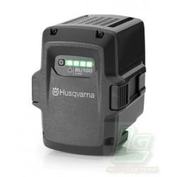 Batterie BLi100